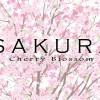 無料で使える!桜のベクターイラスト素材まとめ(AI・EPS・SVG)