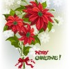 Merry Christmas!ポインセチアのブーケです(AI)