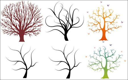 6,beautiful,trees,vector,graphics,01