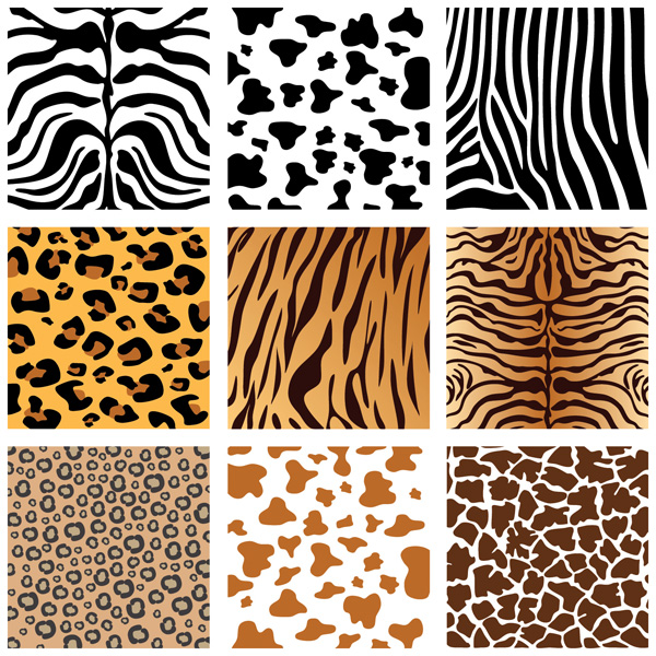 animal skins coloring pages - photo#34