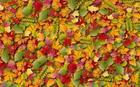 Autumn-Leaves-thumb1-450x278