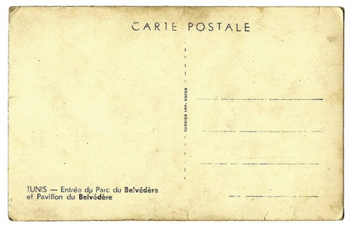 Blank-Postcards-500x324