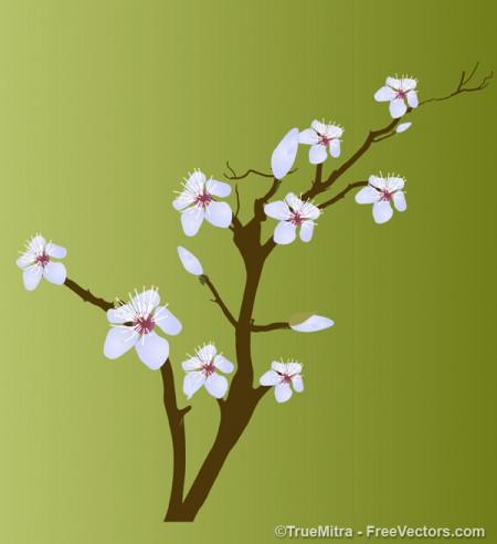 Flower-Branch