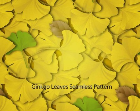 Ginkgo-leaves-450x358