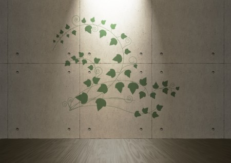 Ivy Vector Clipart