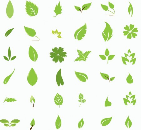 Leaves-450x417