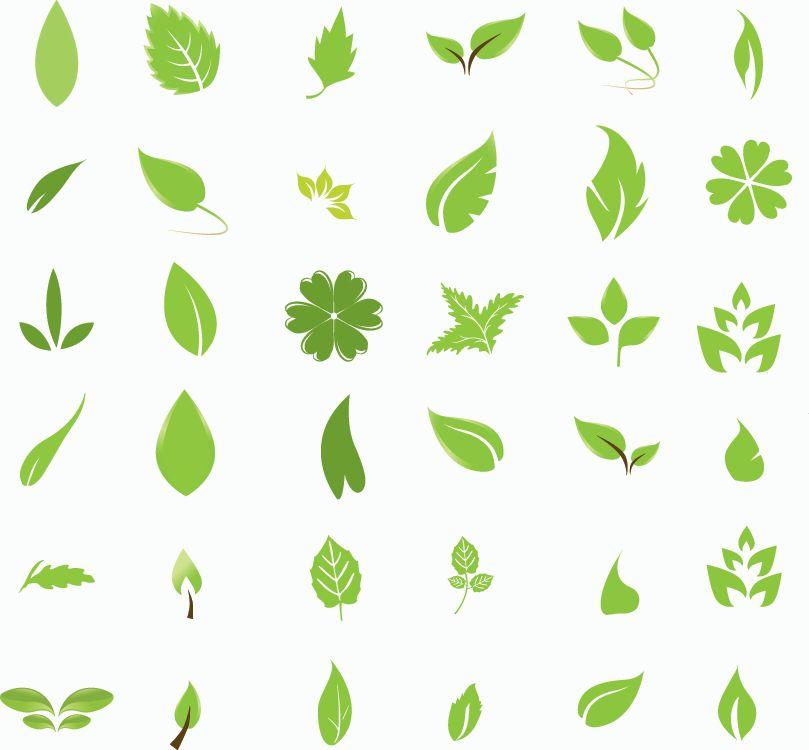 さらっとシンプルな葉っぱleavesのイラスト素材 Free Style All