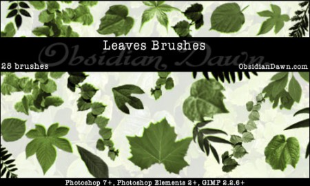 Leaves_Photoshop_Brushes