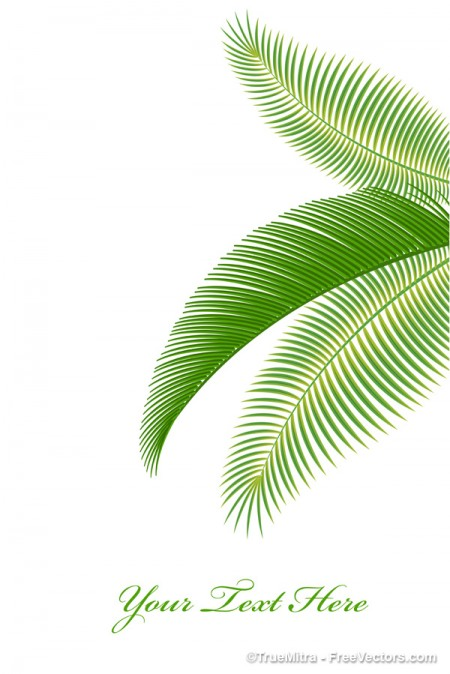 Palm-Tree-Leaves-Background-450x674