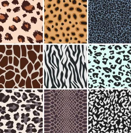 Set-of-Leopard-Pattern-vector-03-450x458