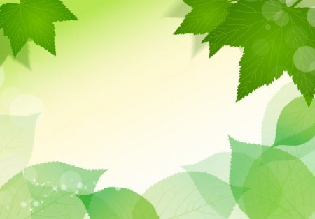 Spring-Fresh-Green-Leaves-Vector-Illustration-450x314