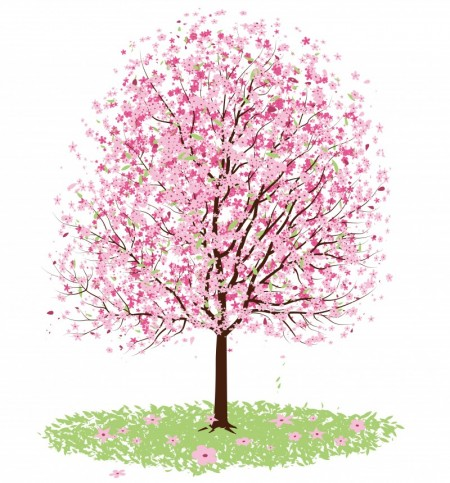 Vector - Pink Cherry Blossom Tree by DragonArt