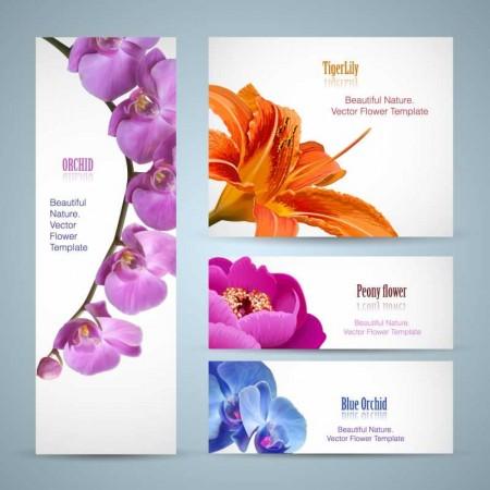 Vivid-with-flower-banner-design-vector-01-450x450