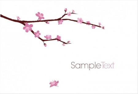 blossomed-cherry-branch-450x306