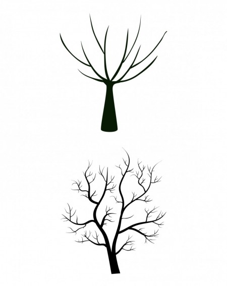 huge-tree-collection-02-450x567