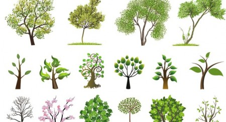 huge-tree-collection-450x244