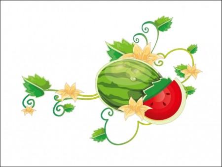 watermelon-10_vectormadness-450x340